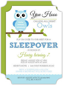 Whimsical Blue Owl Sleepover Birthday Party Invitation