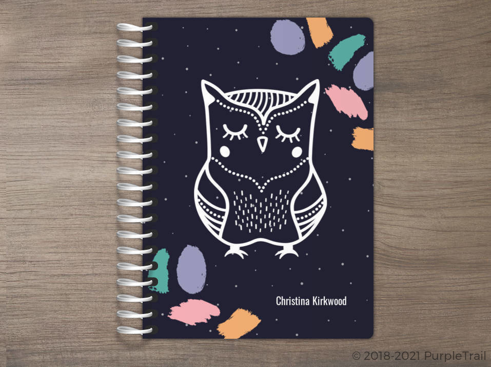 Brush Strokes Owl Tiny Planner