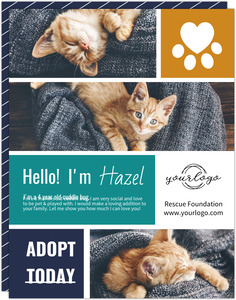 Modern Striped Photo Collage Printable Flyer