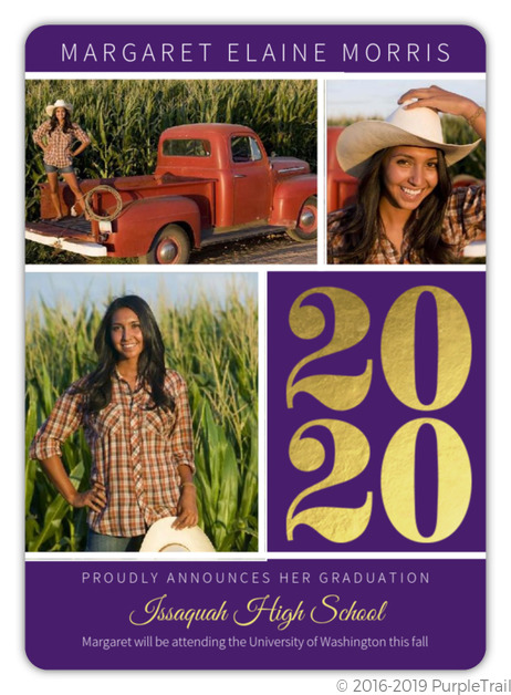 Purple Gold Foil Graduation Photo Announcements