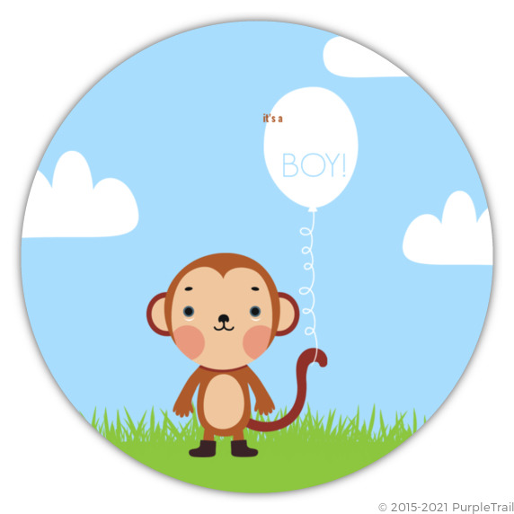Baby monkey baby shower invitation boy baby shower invitations baby monkey baby shower invitation filmwisefo