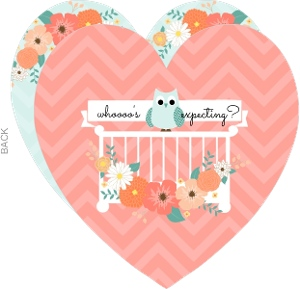 Pink And Teal Floral Owl Baby Shower Invitation