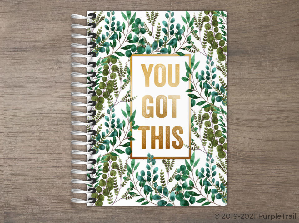 You Got This Tiny Planner