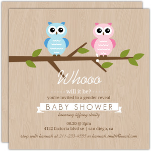 Gender Reveal Owl Baby Shower Invitation