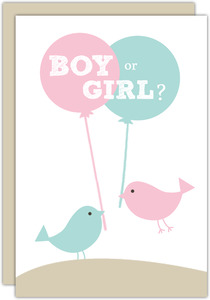 Pink And Blue Birds Neutral Baby Shower Invite
