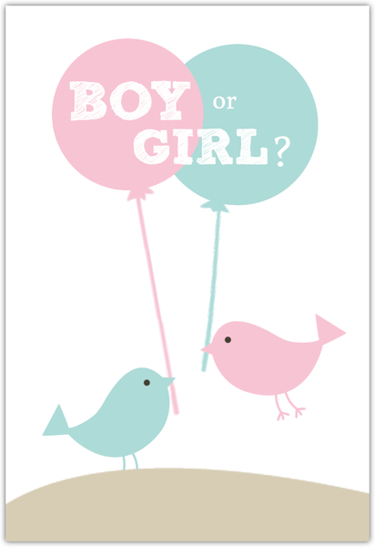 Pink And Blue Birds Neutral Baby Shower Invite Gender Reveal