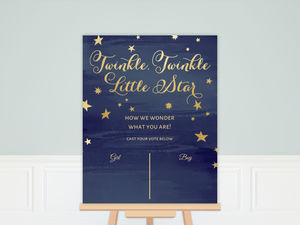 Starry Night Gender Reveal Poster