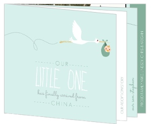 Mint Stork Booklet Adoption Announcement