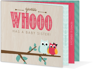 Teal and Poppy Owl Sibling Birth Announcement