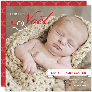 Elegant Noel and Dove Photo Christmas Birth Announcement
