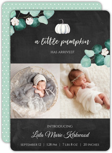 Little White Pumpkin Baby Announcement