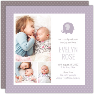 Dusty Lilac Photo Sibling Baby Announcement