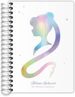 Faux Iridescent Foil Silhouette Tiny Planner