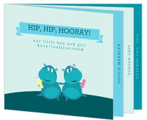 Turquoise Funny Hippos Birth Announcement