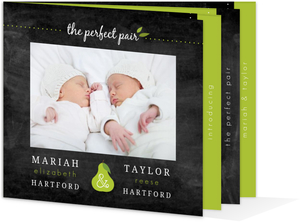 Green Pear Twins Baby Announcement Booklet