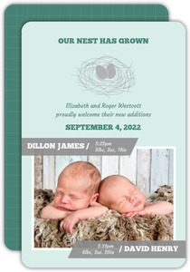 Nest Eggs  Twins Announcement Card