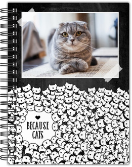 Because Cats Notebook