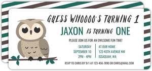 Owl On Branch Birthday Party Invitation