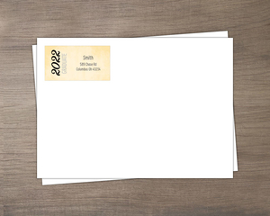 Cream and Grey Graduate Envelope