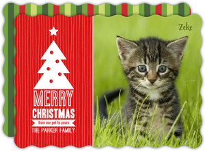 Striped Christmas Holiday Pet Photo Card