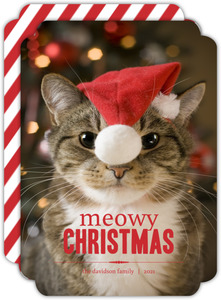 Cat Meowy Christmas Photo Card