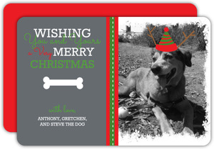 Dog Bone Christmas Photo Card