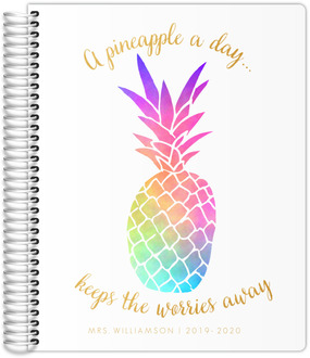 Watercolor Pineapple Teacher Planner