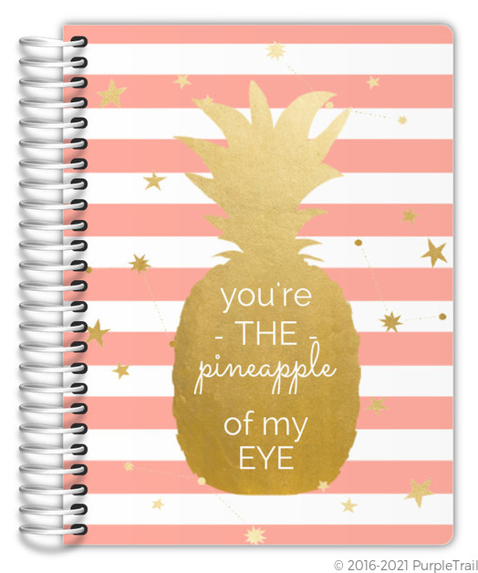 Gold Pineapple Of My Eye Planner