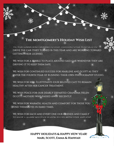 Enchanted Snowy Wonderland Christmas Letter
