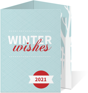Red and Blue Winter Wishes Holiday Card