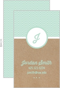 Kraft Mint Chevron Business Card