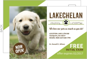 Green Animal Hospital Business Postcard