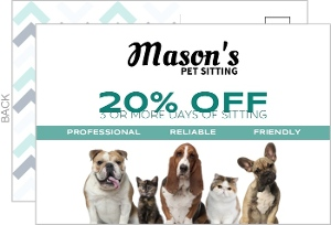 Pet Sitting Business Postcard