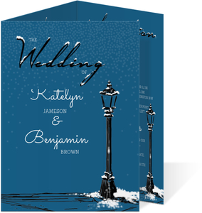 Whimsical Winter Night Wedding Enclosure Card