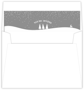 Cold Winter Snow Flakes Envelope Liner