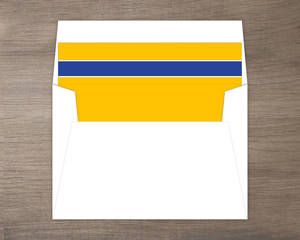 Navy and Yellow Envelope Liner