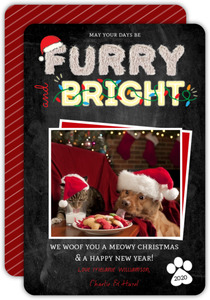 Furry & Bright Typography Cat Christmas Card