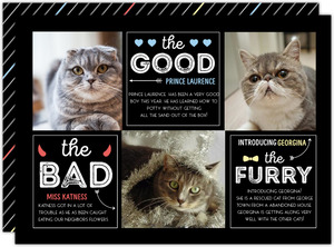 Good Bad  Furry Cat Christmas Photo Card
