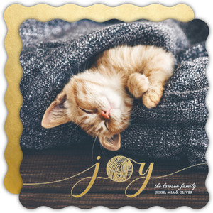 Golden Yarn Joy Cat Christmas Photo Card
