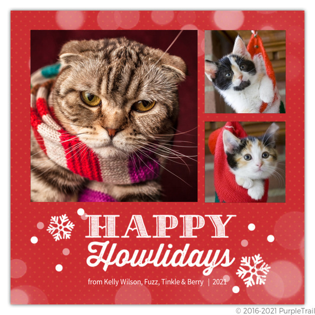 howliday collage pet holiday photo card - Pet Holiday Cards