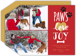 dog christmas cards dog photo christmas cards