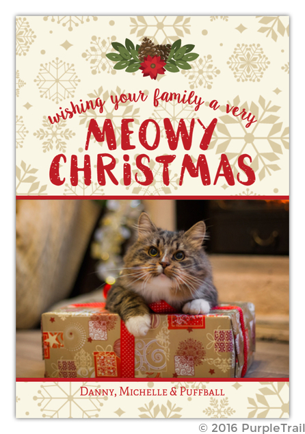 Textured Meowy Cat Christmas Card