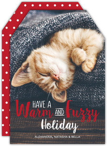 Warm & Fuzzy Cat Holiday Card