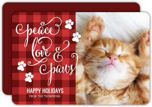 Peace Love Paws Cat Christmas Photo Card