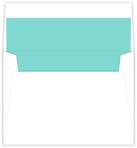 Mint Coral Envelope Liner