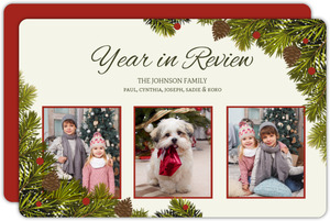 Pine Cone And Branches Year In Review Holiday Card