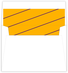 Simple Diagonal Stripes Graduation Envelope Liner