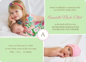 Mint Green and Pink Photo Sibling Announcement