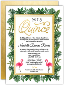 Quinceanera invitations custom quince invites quinceanera invitations stopboris Choice Image