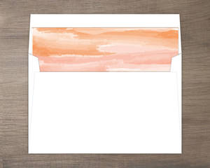 Orange Sky Desert Envelope Liner